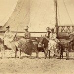 Clacton donkey riding